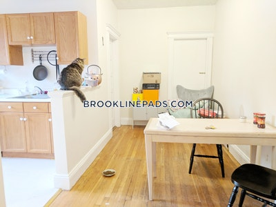 Brookline Apartment for rent 2 Bedrooms 1 Bath  Cleveland Circle - $2,575 No Fee