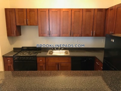 Brookline Apartment for rent 1 Bedroom 1 Bath  Washington Square - $2,125 No Fee