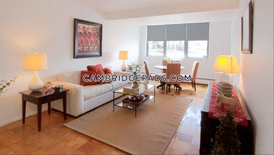 Cambridge 1 Bed 1 Bath  Porter Square - $2,605
